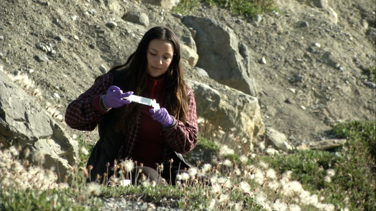 I-STEAM opens environmental research pathways for Indigenous students
